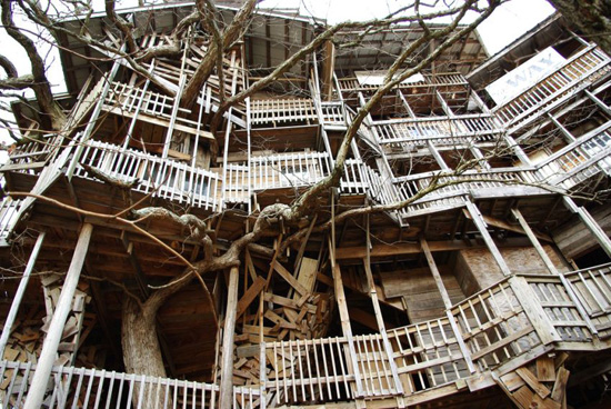 Worlds-Biggest-Tree-House-jearaf-10