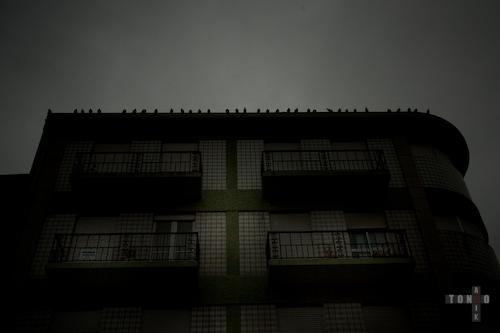 porto_web-1.jpg